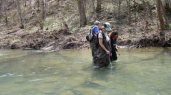 Kentucky Agate Hunters in Creek